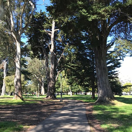 Panhandle Golden Gate Park San Francisco 2019 All You Need To