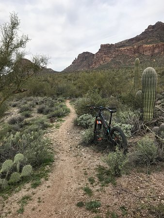 Superstition Mountains: Mountain biking in Gold Canyon