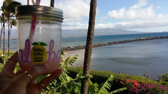 Wow Wow Hawaiian Lemonade Resmi