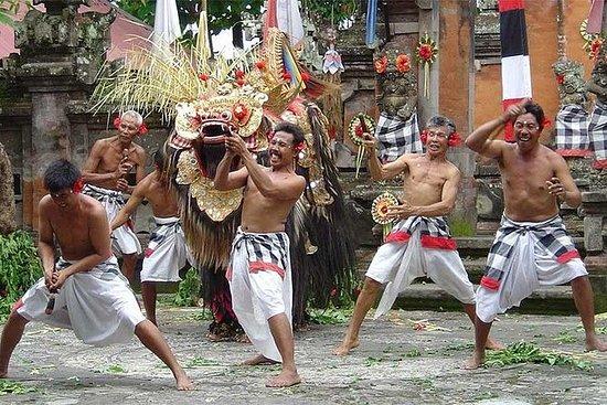 Ubud Wondrous Tour