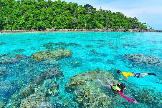 Surin Island Dagstur