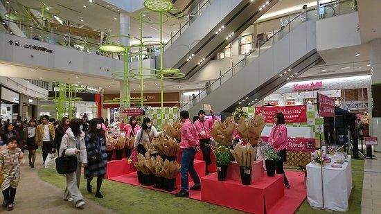 名古屋Mozo Wondercity购物中心