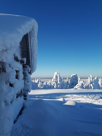 Our safaris take you through beautiful snowy landscape in Sea Lapland