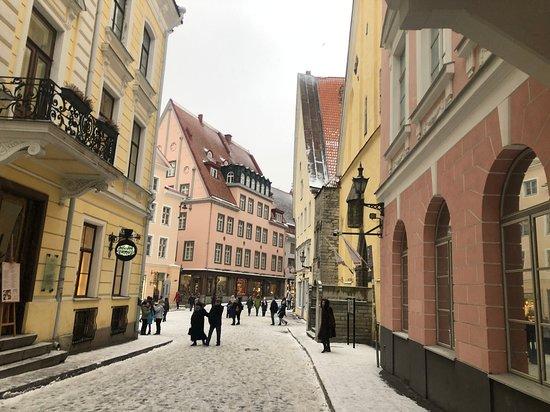 Tallinn 15:15 Picture