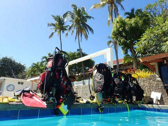 Puahele Diving Tour