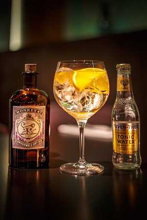 An amazing Gin & Tonic with Monkey 47. Simply delicious