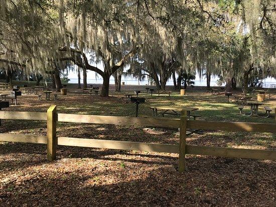 Ocklawaha, FL: Looking toward the lake from parking area