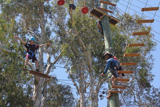 Apex Camps Sunshine Coast