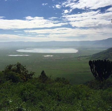Ngata Expeditions