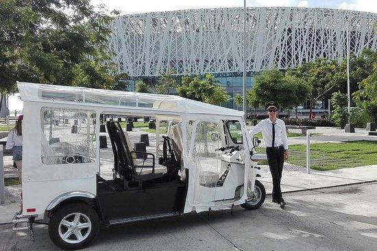 Tour eléctrico Tuk-Tuk de...