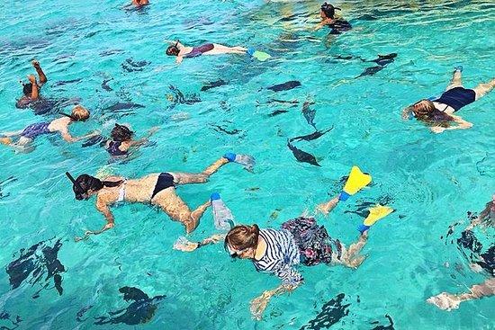 Cruzeiro com snorkel na lagoa