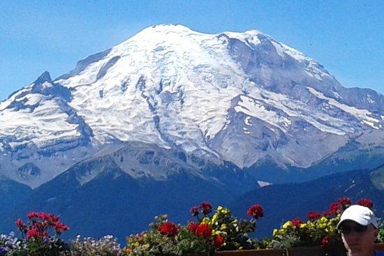 Mountain Scenery & Gondola Ride with...