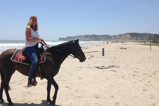 Canoa strand hest ridning utflukt. Galopp på stranden i Ecuador!