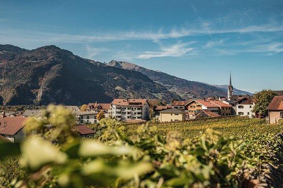 บาดรากาซ, สวิตเซอร์แลนด์: View
