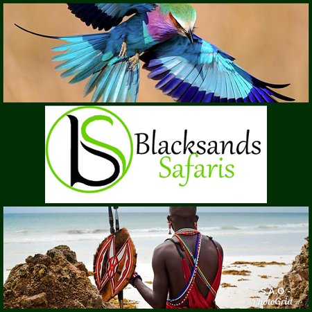 Blacksands Safaris Tour & Travel