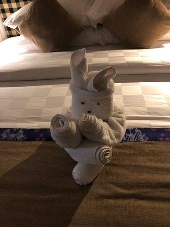 towel oregamy