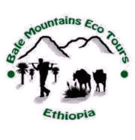 Bale Mountains Eco Tours Ethiopia