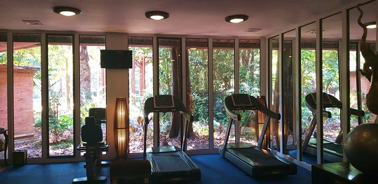 La salle de fitness bénéficie d'une jolie vue sur le jardin. Comment lié l'utile à l'agréable...