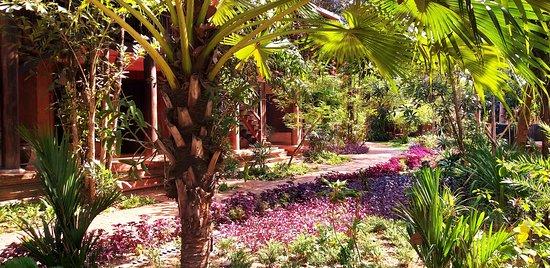 Angkor Village Resort & Spa: Très joli cadre qui entoure la salle de petit-déjeuner