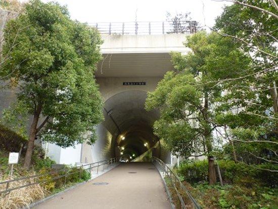 Toyoko Flower Green Way: 高島山トンネル