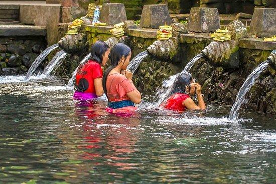 私人旅游:乌布村和寺庙之旅