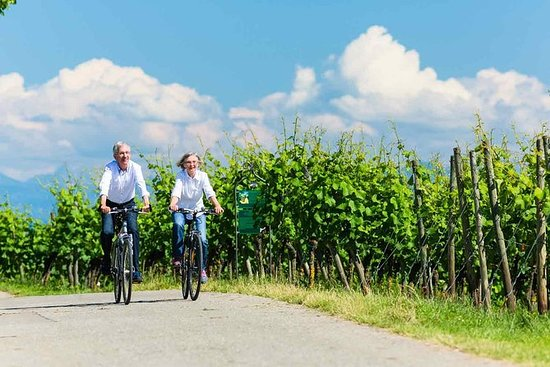 E-Bike Tour in the vineyards with 2...
