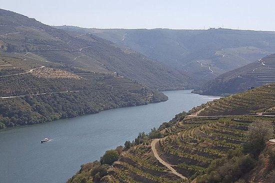 Valle del Douro: tour regolare