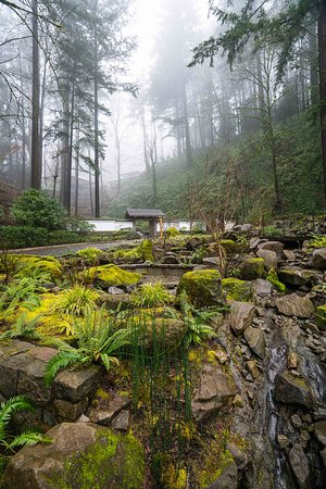 Portland japanese garden 2019 what to know before you go with photos tripadvisor for Portland japanese garden admission