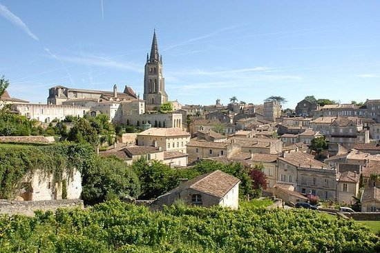 Tour wine tourism Saint-Emilion with...