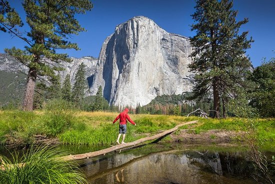 優勝美地國家公園為期3天的半導遊與巨型紅杉