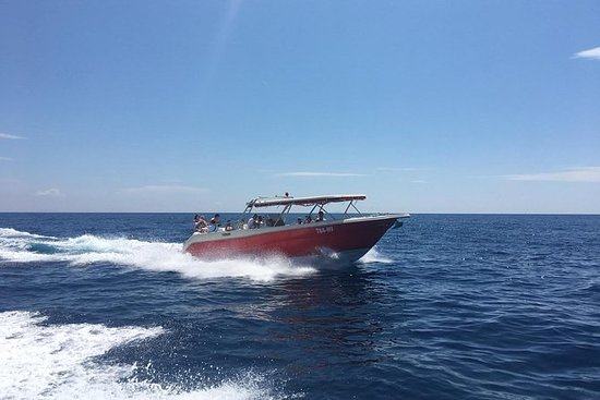 Private Transfer by Speedboat from...