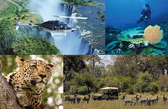 Edge Travel and Safaris