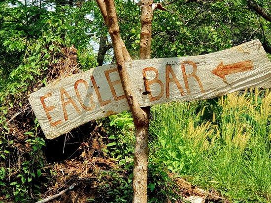 Eagle bar