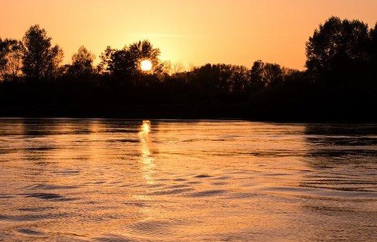 Loire-Atlantique, ฝรั่งเศส: Coucher de soleil sur une île sauvage de la Loire