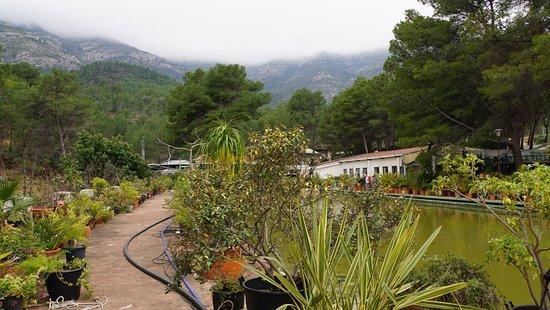 La Piscina: garden