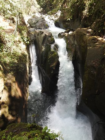 Providencia de Dota, Costa Rica: This waterfall is just a minute's walk from the lodge.