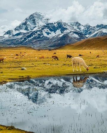 Milluni, Bolivia: Самый лёгкий для восхождения шеститысячник в мире. Высота 6088м, от базового лагеря подъем всего 1,4 км. До лагеря из ла-пас 25 км на авто
