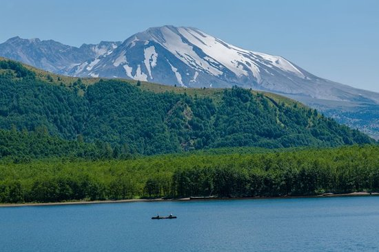 Silver Lake, WA: Mt St Helen's from Coldwater Lake