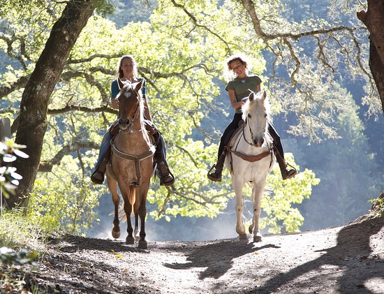 Glen Valley Stables Horseback Trail Rides