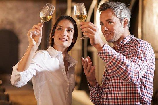 全日雅典葡萄酒之旅和Cape Sounio午餐