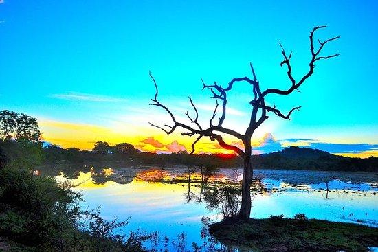 9 Days Guided Tour in Sri Lanka