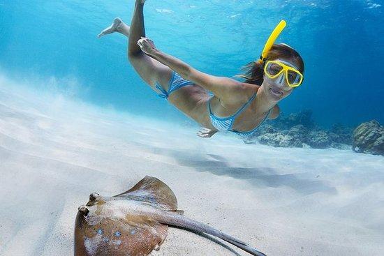 St. John Snorkel, nadar y...