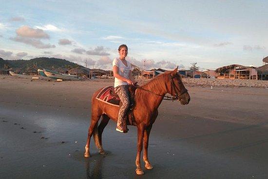 En times hesterygetur, se skjønnheten i den fantastiske Ecuador kysten