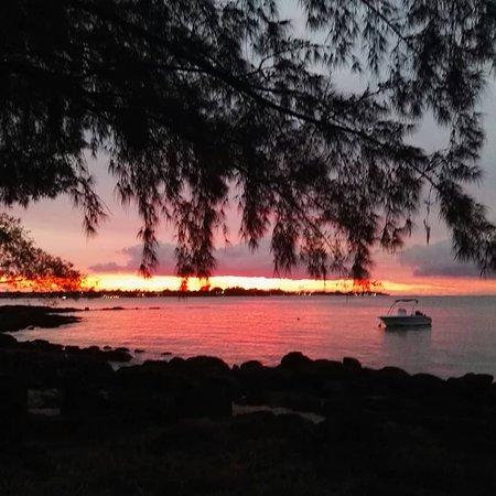 Solnedgång från stranden