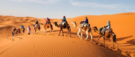 Morocco Discovery Trip