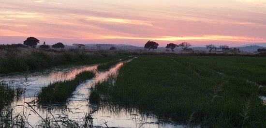Galisteo, Spanje: Valle del Alagón. Rutas guiadas para la observación de aves. https://www.idunatours.com/ro-6-otra-mas-de-pajaros