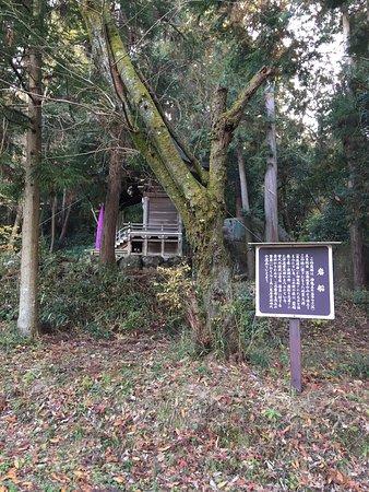 Higashiomi, Japan: 猪子山