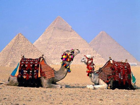 Magic Cairo Tours