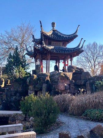 Chinagarten Stuttgart Aktuelle 2019 Lohnt Es Sich Mit Fotos