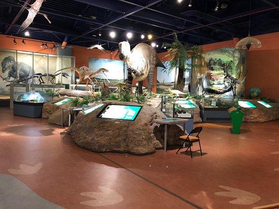 Dinosaur Isle Foto